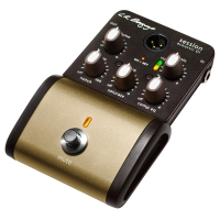 LR Baggs Session DI Acoustic Guitar Preamp (Session DI)