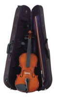 Palatino Allegro Violin Outfit VN-450 (VN-450)